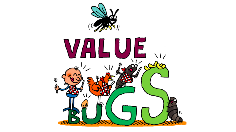 Projet Value Bugs